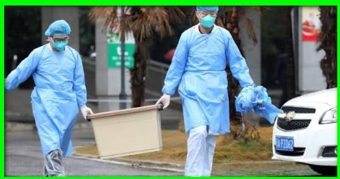 فيروس قاتل يطرد عمال شركة