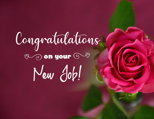 Congratulations On Your  New Job
