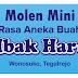 Molen Mini Mbak Harti