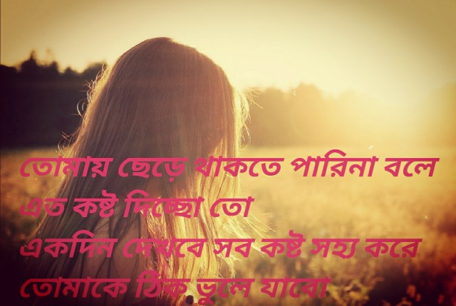 sad bangla shayeri photo