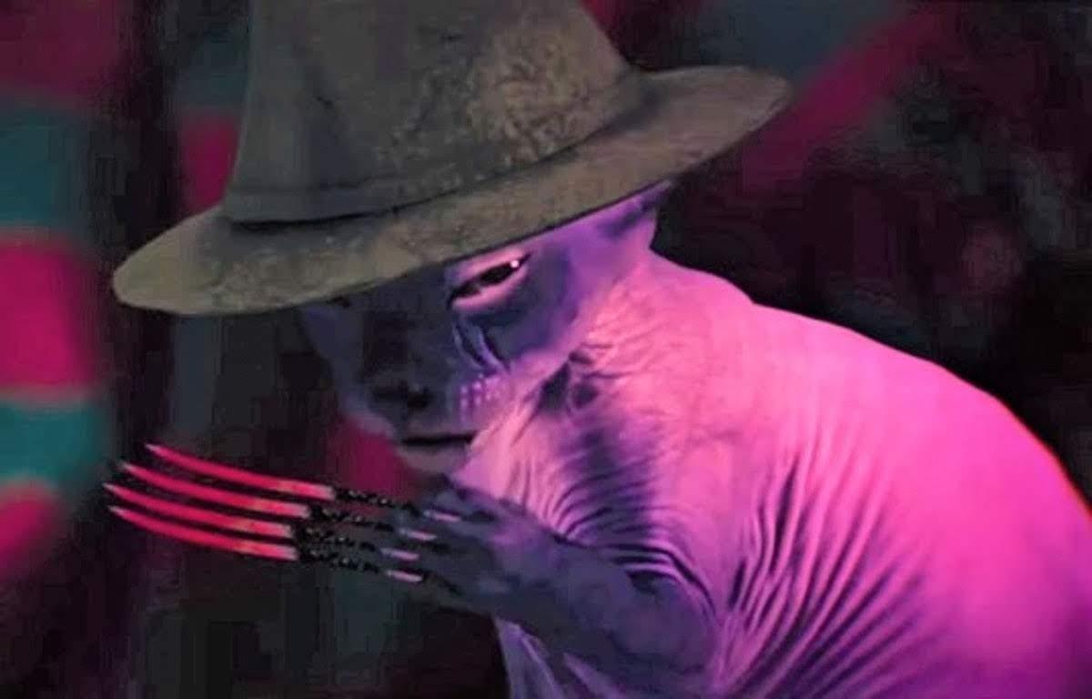 A Catmare On Elm Street : エルム街の恐怖のニャンコメア ! ! 😱