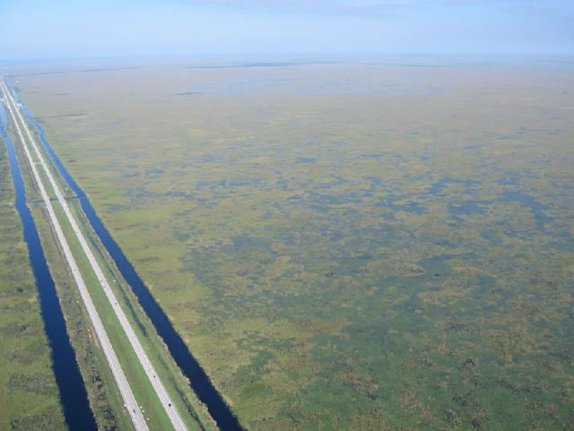 Everglades pelo Alligator Alley (I-75) em Miami