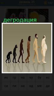 как происходит деградация человека от обезьяны на 25 уровне 600 слов загадок