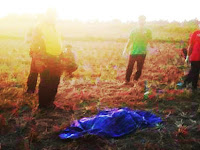 Warga Temukan Mayat Wanita Ditengah Persawahan Kampung Mangkaca, Segeri, Pangkep
