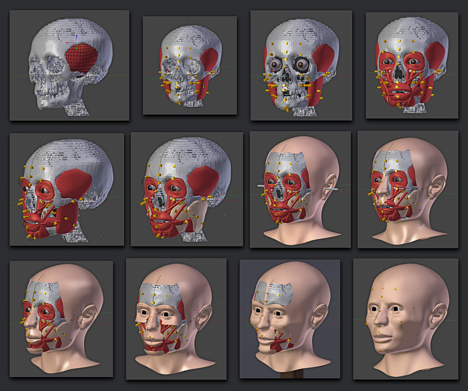 Facial reconstruction courses