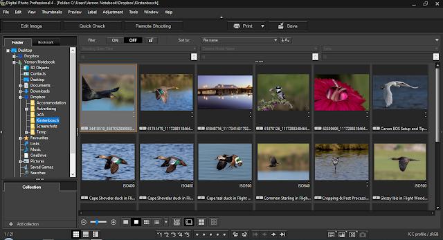 Canon Digital Professional (DPP) 4.10.50 for Windows Sample Image Editing Screen Grab