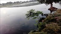 Un lac clair et limpide...