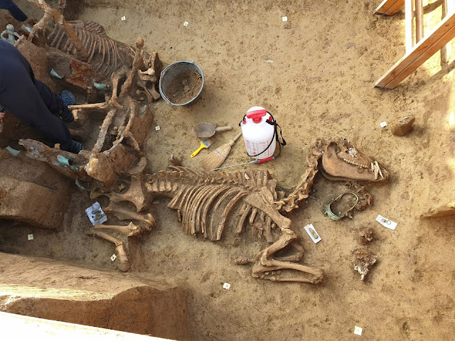 Roman chariot burial discovered in Croatia