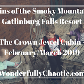 5 Reasons Large Families Should Vacation at Cabins of the Smoky