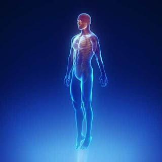 اجهزة واعضاء جسم الانسان