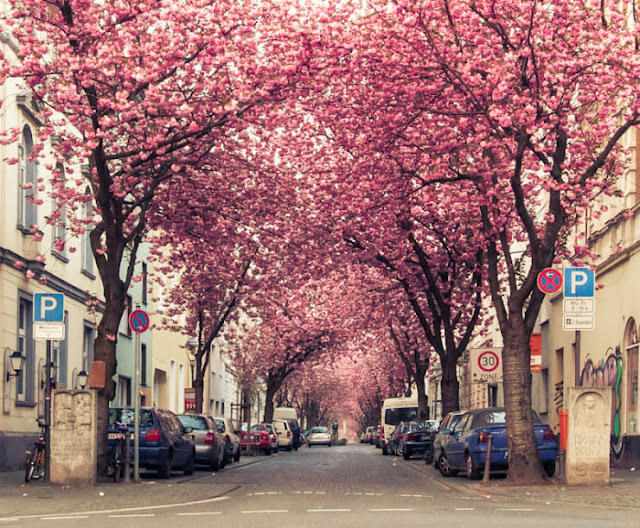 Heerstrasse, Bonn, Jerman
