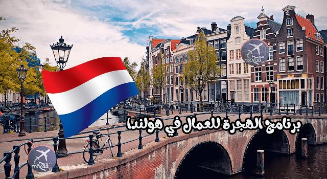 برنامج العمال المهرة في هولندا – كيف تسجل و ماهي شروطه