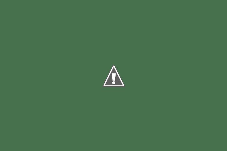 La Vall d'Horta: Vins, Poesia i Modernisme
