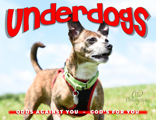 UNDERDOGS – Our Labels Limit Us | Sermon from 8/18/2019