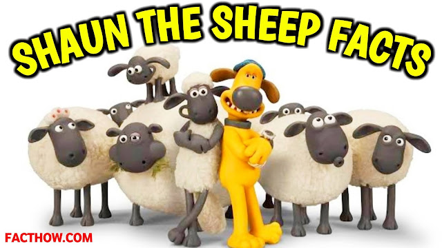 SHAUN THE SHEEP से जुड़े 22 मजेदार रोचक तथ्य, शान द शीप क्या है इन हिंदी | What is Shaun the Sheep, Interesting facts about Shaun The Sheep, Shaun the Sheep: Super-natural wool, 22 INTERESTING FACTS ABOUT SHAUN THE SHEEP CARTOON SHOW, NICKELODEON, Fascinating behind the scenes facts from Shaun The Sheep, 10 incredible facts about how Shaun the Sheep, FACTHOW, फैक्ट हाउ , Shaun कौनसी breed का है ?, SHAUN THE SHEEP MOVIE IN HINDI DUBBED FREE DOWNLOAD, SHAUN THE SHEEP SHOW FULL EPISODES IN HINDI, SHAUN THE SHEEP MOVIE DOWNLOAD FREE