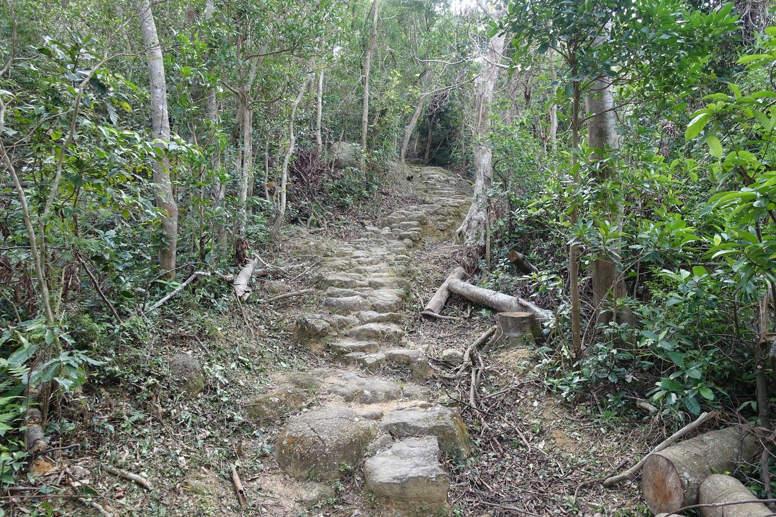 消耗五百食翻一千※香港行山記: 梅花古道(馬鞍山梅子林→沙田花心坑) Mui Tsz Lam - Fa Sam Hang Ancient Trail (Ma On ...