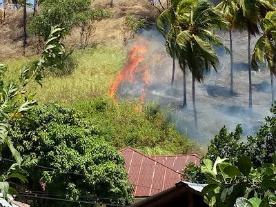 Antisipasi Kebakaran Lahan, Ini Kata Lurah Uwuran Dua