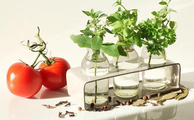 Czy chcesz zostać miejskim ogrodnikiem?