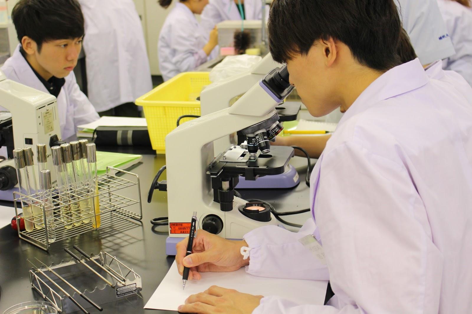 日本大学 生物資源科学部 食品生命学科 ニュース