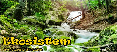 Pengertian Komponen Dan Jenis Jenis Ekosistem