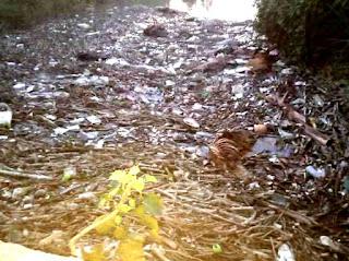 सड़ाध मारती दुर्गंध ने जीना हराम, डीएम से सफाई करवाने की मांग | #NayaSaveraNetwork