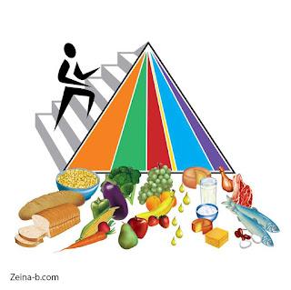 النظام الغذائى الهرمي