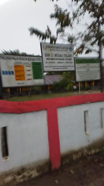 """Banyuasin - Efrija Yuniar alias Yuyun(50) ditemukan tewas membusuk dalam kamar mandi rumahnya di RT 16/01 Desa Marga rahayu, Kecamatan Muara Telang, Kabupaten Banyuasin, Kamis (09/7). Polisi belum dapat memastikan motif pembunuhan tersebut  Aipda Donny anggota Polsek Muara Telang mengatakan, jasad pertama kali ditemukan oleh seorang ibu rumah tangga bernama nteng(40) karena yang bersangkutan sudah beberapa hari tidak terlihat berbaur bersama warga di kediaman tempat tinggal korban  Laporan tersebut ditindaklanjuti dengan mendatangi kediaman Yuyun, Saat didatangi keadaan rumah dalam keadaan terkunci dari dalam. Setelah mendobrak pintu depan, polisi bersama warga menemukan Yuyun berada di dalam kamar mandi, terlentang di dalam sebuah tempat air, dengan tanpa mengenakan sehelai pakaian.  """"Saat ditemukan, tubuh korban sudah membengkak. Diperkirakan Yuyun sudah meninggal satu atau dua hari sebelum jasadnya ditemukan,"""" papar Donny  Setelah dilakukan pemeriksaan, kata Donny, hasil sementara masih menunggu keputusan dari INAFIS polres Banyuasin, selanjutnya jenazah di bawa ke Rumah Sakit Bhayangkara untuk dilakukan autopsi.   Sementara, saat di konfirmasi salah satu pekerja bangunan yang sedang mengerjakan bangunan Yang tepat berbelahan dengan tempat tinggal korban. Acek (35) menuturkan pada hari Selasa tepatnya pukul 04.30. Korban yang merupakan salah satu pengajar di SD negeri 11 Muara Telang ini  masih sempat berbincang dengan dirinya, dan masih terlihat sehat.   Tetapi pada hari Rabu pagi dirinya tidak lagi bertemu dengan yang bersangkutan. Saya mengira jika kondisi dia baik-baik saja. Saya sama sekali tidak menyangka,"""" ucapnya. (Tri Sutrisno)"""