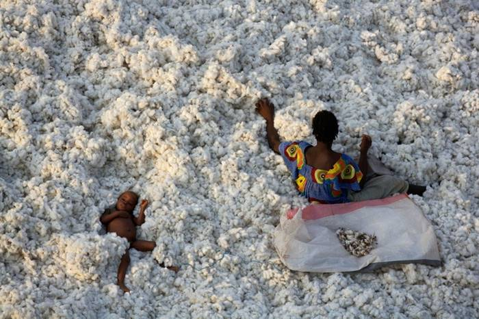 Mom with a child in the snowdrifts of cotton, Burkina Faso