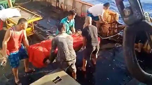 Viralnya Pelarungan ABK di Kapal Tiongkok, Kepala BP2MI : Momentum Perbaikan Tata Kelola