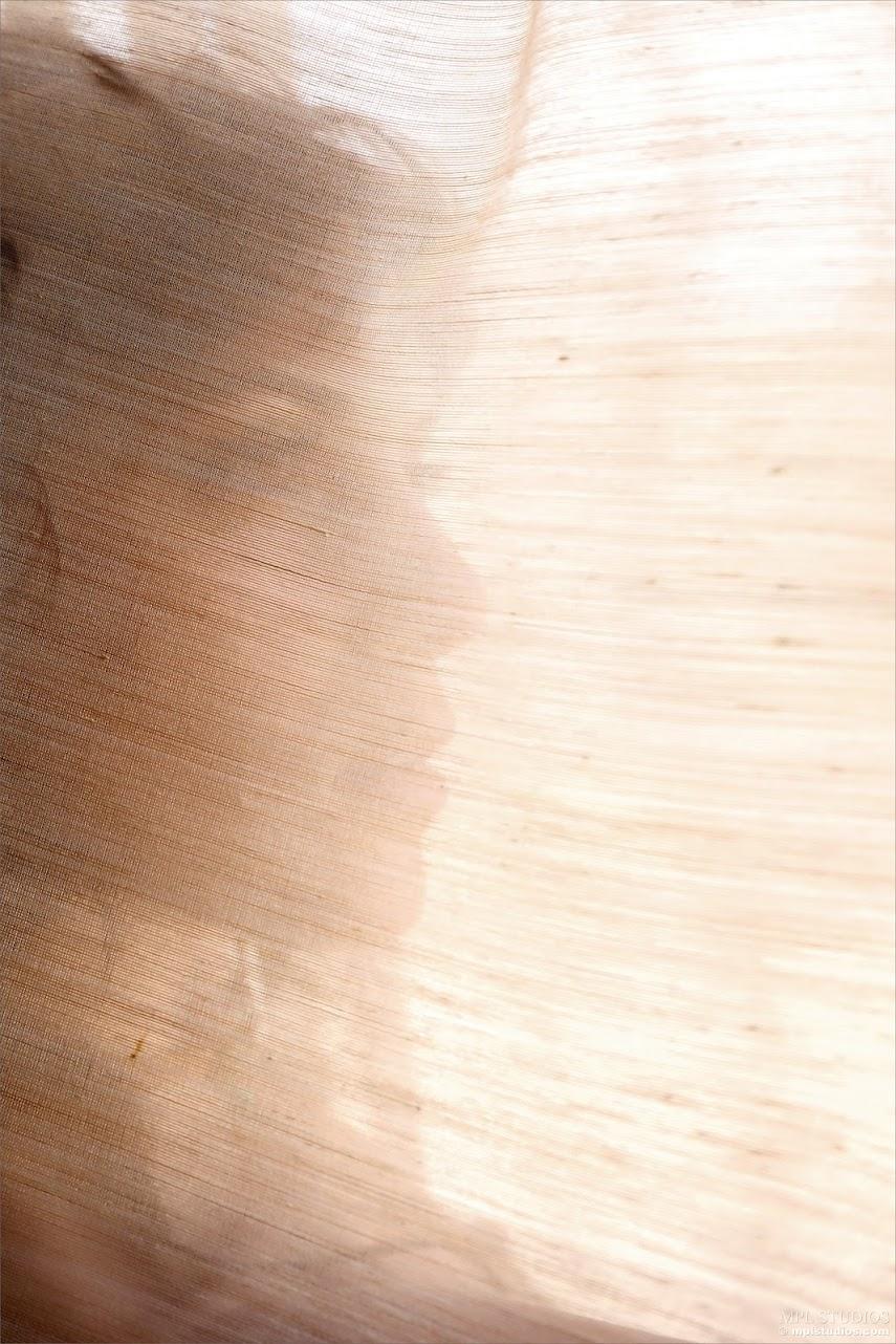 240780 [MPLStudios] Elena Generi - The Feather Rebellion mplstudios 06210
