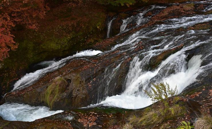 竜頭の滝の上の方の流れ。紅葉した落ち葉で岩が赤く染まったように見える