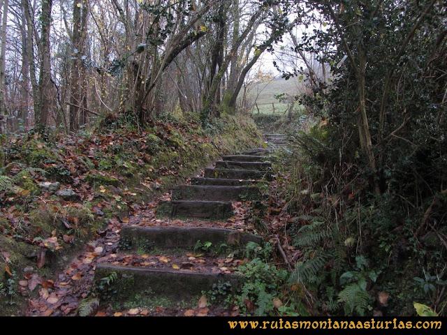 Ruta de las Xanas y Senda de Valdolayés: Escalones en el camino