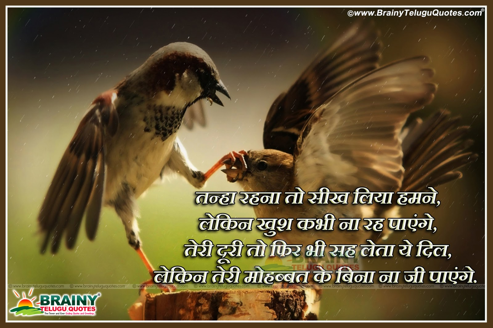 Hindi successful love quotes with love hd wallpapers hindi successful love quotes with love hd wallpapers kristyandbryce Images