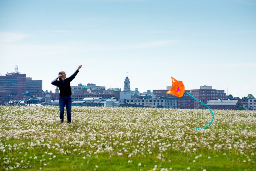 Flying a kite in Bug Light Park in South Portland, Maine with the Portland, Maine skyline in the background. May 2016. Photo by Corey Templeton.