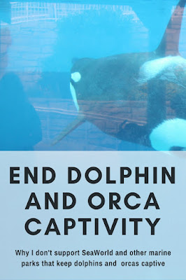 why I don't support SeaWorld and other marine parks that keep dolphins and orcas captive