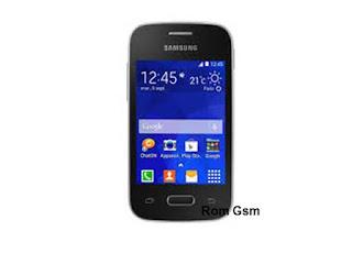 Firmware Download Samsung Galaxy Pocket 2 SM-G110H