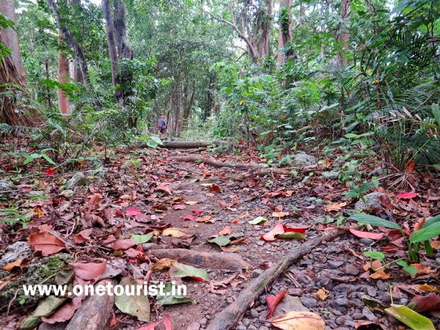 saddle peak photos andaman