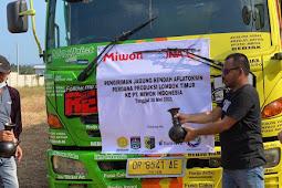 "15 Ribu Ton Jagung Rendah Aflatoksin NTB Sasar ""Food Industry"" dalam Negeri"