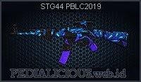 STG44 PBLC2019
