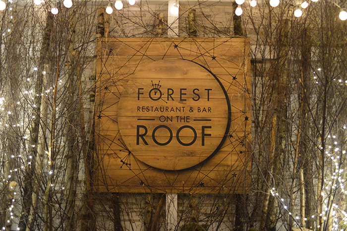 forest on the roof bloggers