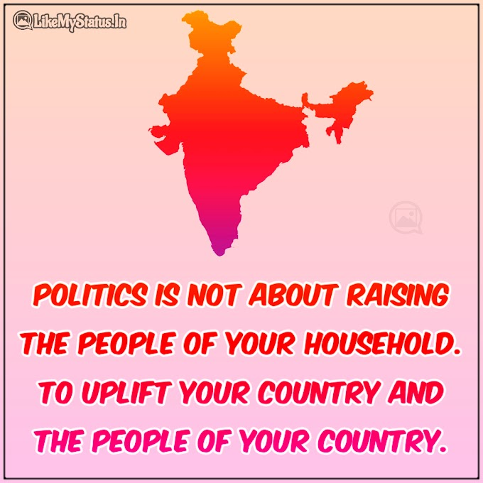 What Is Politics Quote