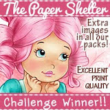 The Paper Shelter Random Winner