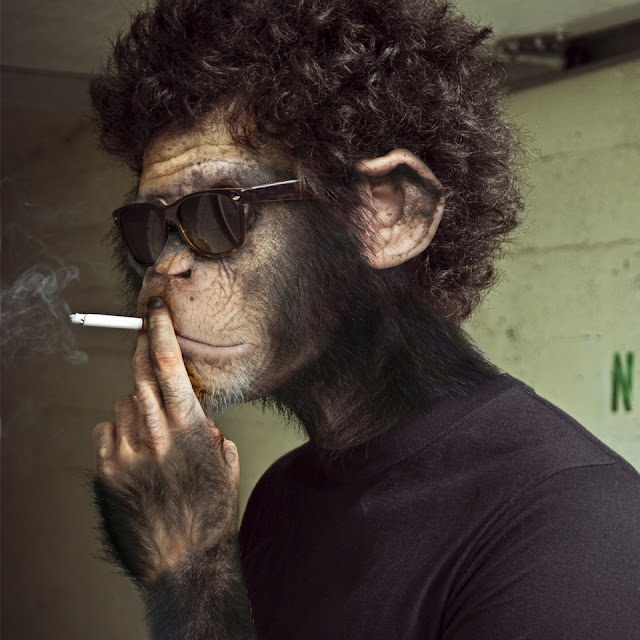 SCIENTISTS OF FAILING HUMAN SPECIES CREATE HIGH IQ APES IN FRANKENSTEIN EXPERIMENT