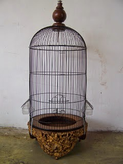 Logam yang Bebahaya Bagi Burung Lovebird - Pemeliharaan dan Pemilihan Sangkar Burung Lovebird