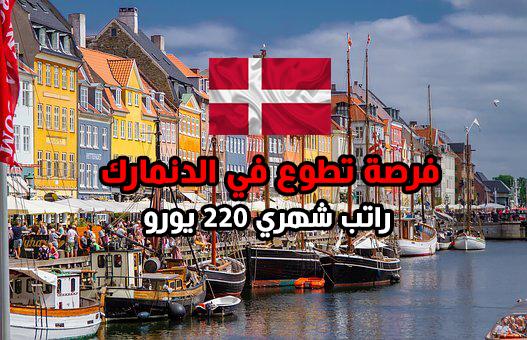 تطوع وتعلم اللغة الدنماركية في مدرسة بالدنمارك 2021 ( ممولة بالكامل)