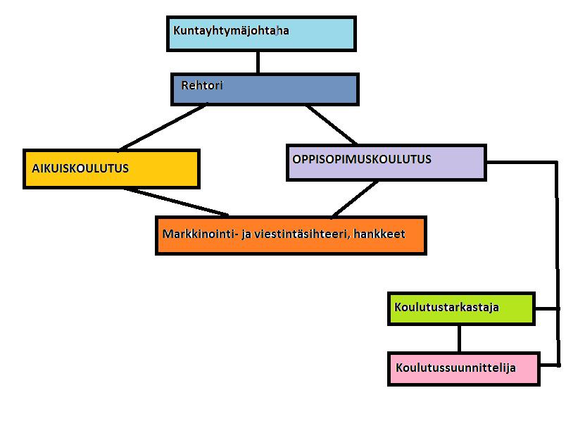 Organisaatiorakenteet