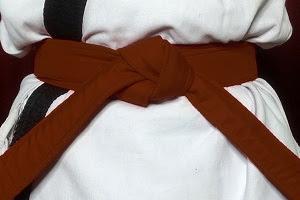 Karate Dark Brown Belt Meaning in Hindi   जानिए कराटे में गहरी भूरी बेल्ट का मतलब।