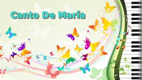 Canto De Maria