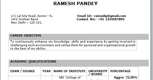 pdf resume template resume format download pdf
