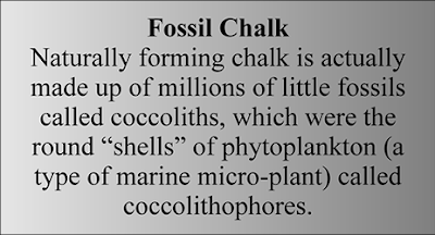 Geology Fun Fact - Fossil Chalk